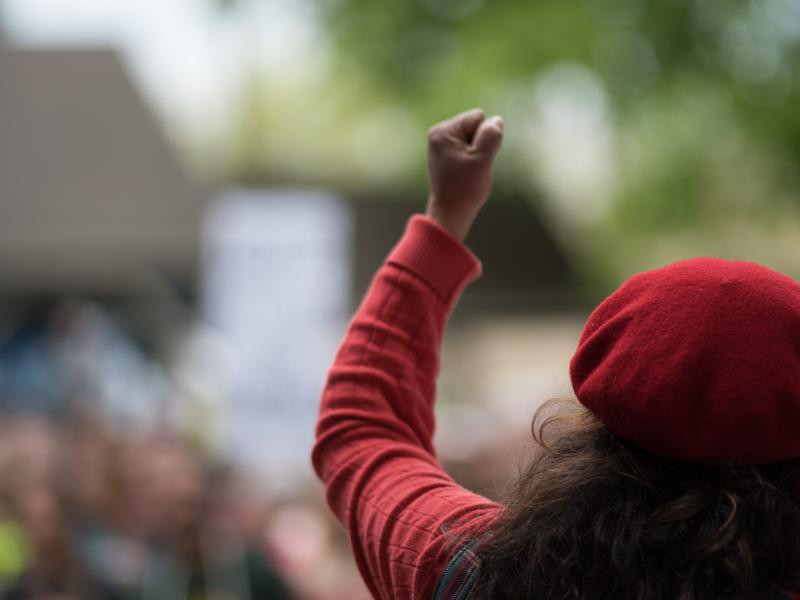 A demonstrator raises a fist at the People's March