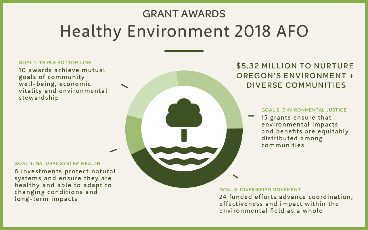 Diversifying our environmental movement: Healthy Environment portfolio awards $4 million in grants