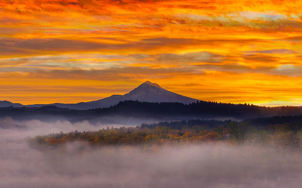 Photo caption: A mist covers the canopy of a forest in front of Mount Hood in Oregon, atop an amber horizon during sunrise.